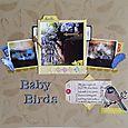 GSM Issue 6 Baby Birds